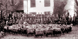 Shepherds' Meet outside Dun Bull Hotel