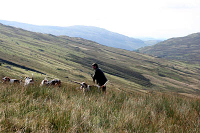 Hunting in the Fells